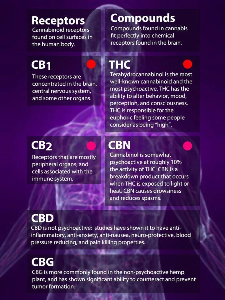 Thc Withdrawal Symptoms Duration